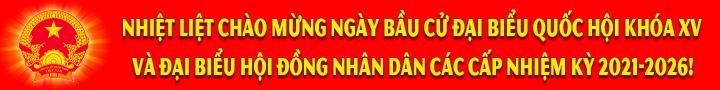 Banner Bầu cử ĐBQH-ĐBHĐND 2