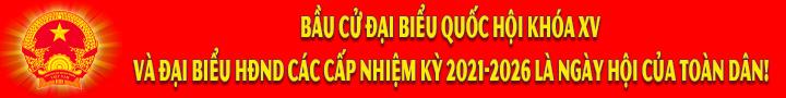 Banner Bầu cử ĐBQH-ĐBHĐND 5
